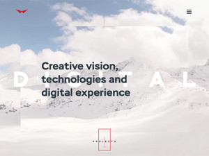 Red Collar digital agency